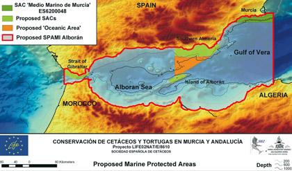 Sperm whale habitats