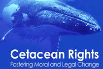 Rights for whales and dolphins