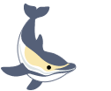Learn about endangered dolphins