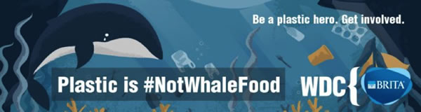 Plastic is #NotWhaleFood