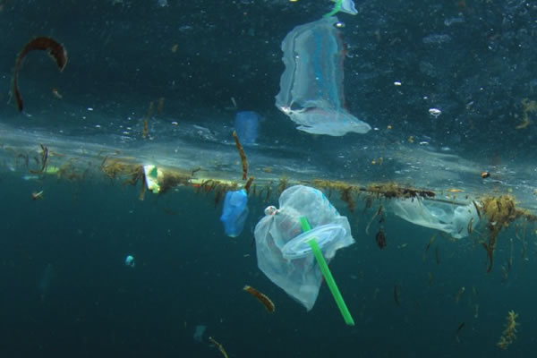 Plastic in the ocean