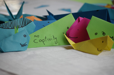 Make an origami dolphin