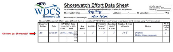 Effort data sheet