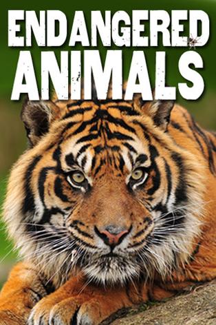 New Endangered Species App