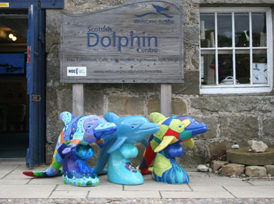 Sculptures at Scottish Dolphin Centre