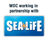 WDCS in partnership with Sea Life